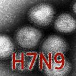 Emergence of Avian Influenza A(H7N9)