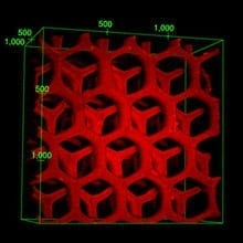 3-D structure of the detoxifier, measured by laser confocal microscopy