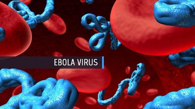 ebola-virus-disease-news