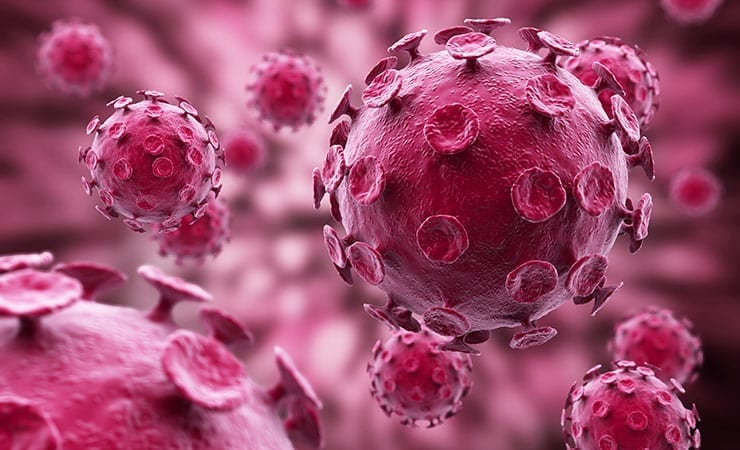Influenza Immune Response Drug