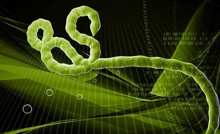 Tekmira Phase 1 Ebola Drug Trial