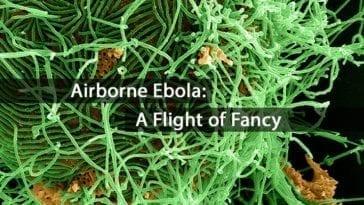 Airborne Ebolavirus