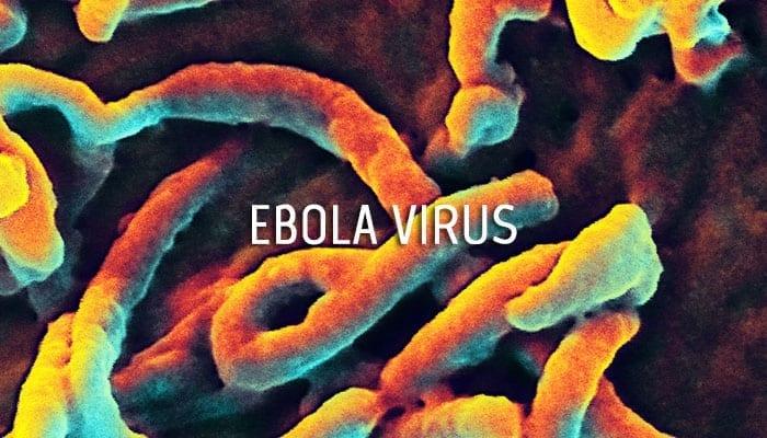 Ebola Virus Countermeasure Development