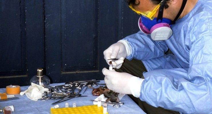 Lassa Fever Outbreak Investigation