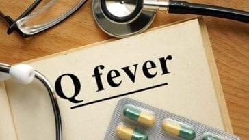 Q Fever Medical Countermeasure Research