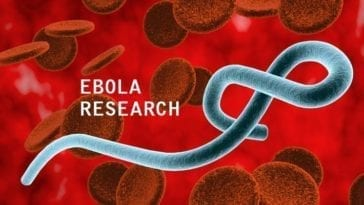 Ebola Outbreak Research and Analysis