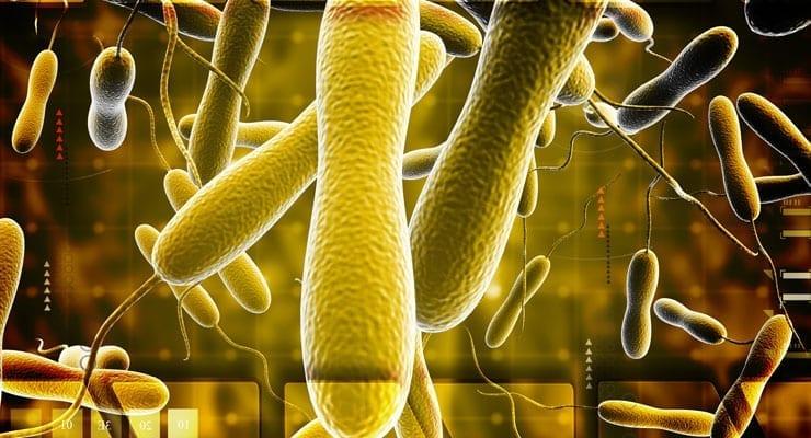 Food and Waterborne Pathogens
