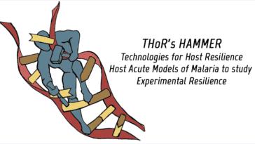 THOR's HAMMER - Technologies for Host Resilience