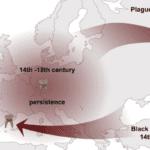 Plague Pandemics