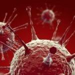 Influenza H1N1 Research