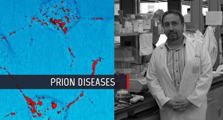 Prion Diseases Research