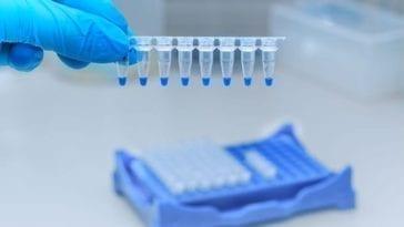 Genomic Research Viruses