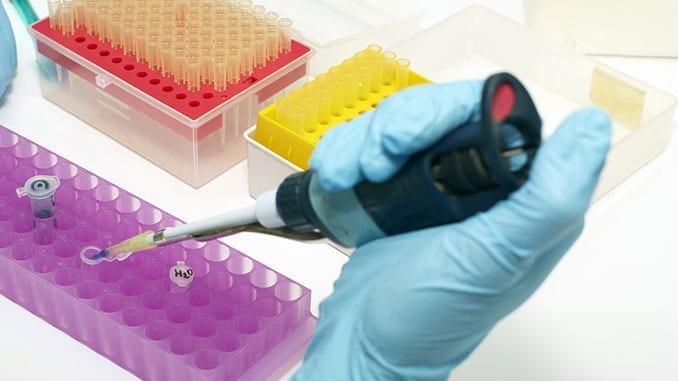 Rapid Diagnostics Assay Development