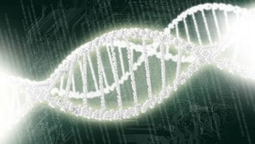Genome Editing Research