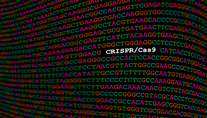 CRISPR/Cas9 Editing - Research on Genome Damage