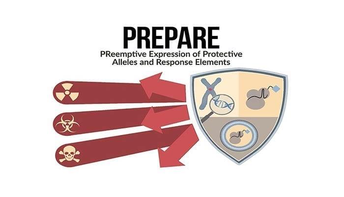 DAPRA PREPARE Program - Gene modulation to protect against CBR threats