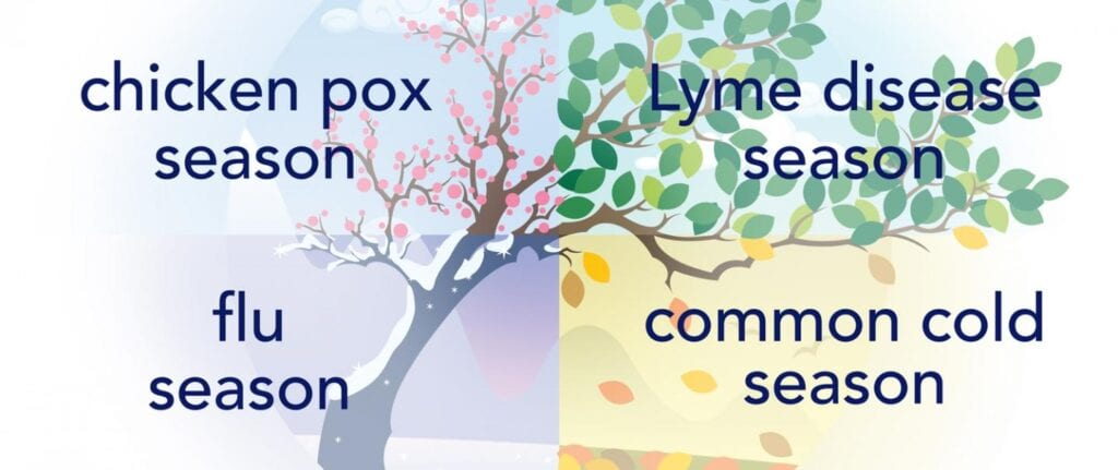 A few examples of seasonal infections. Credit: Mailman School of Public Health.