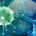 Global Influenza Strategy - World Health Organization