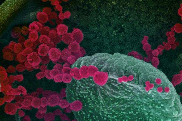 "Pelosi Pans Funding for Coronavirus Response: ""Ongoing Failure to Understand Urgent Public Health Needs"""