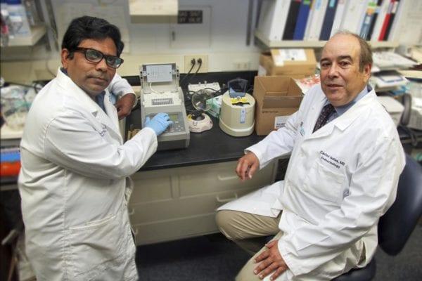 Tiny RNA That Should Attack Coronavirus Diminish with Age
